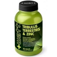 Tribulus & Zinc boite de 90 gelules