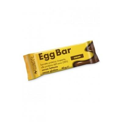 Barre Egg Bar proteine d'oeuf 40gr