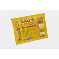 Poudre Sali+ (Pocket mineraux) sachet de 20 g